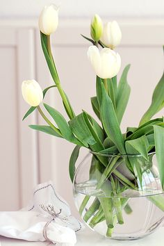 White tulips in a clear vase:  I love the tiny bubbles you see form on the stems.