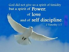 Quotes About The Holy Spirit Adorable Pinmihir Roy On Christanity  Pinterest