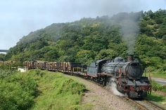19 D 2 Untitled Steam at Umkomaas, South Africa by Fabrice Lanoue Train Car, Train Tracks, Steam Pictures, South African Railways, Old Steam Train, Steam Railway, Abandoned Train, South Of The Border, Kwazulu Natal