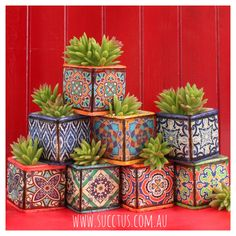 Image gallery – Page 584553226609594440 – Artofit Tile Crafts, Diy Home Crafts, Garden Crafts, Garden Art, Diy Home Decor, Arts And Crafts, Pottery Painting Designs, Pottery Designs, Succulents Diy