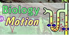 Dr. Sauls Biology in Motion: Bringing Biology to Life.  Really fun stuff on this site for the high school biology teachers and students.