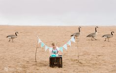 A Cake Smash Session on the beach! {Cake Smash Photographer- Denver, CO} » Denver and Golden Family Photographer- Holly Strebel Photography