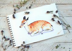 This is the ORIGINAL baby deer waterolor, which was painted by me on the high quality Italian paper 270 gsm with professional watercolor. Deers are just beautiful! These refined and graceful animals inspire me again and again to create my woodland nursery art. I believe this small size little deer art will be a lovely decoration for childrens room. The artwork is on sale now. The artwork is unmounted and unframed. It is signed by me in the right corner (ginger watercolor).  Artwork colors…
