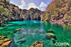 located in coron northern palawan, kayangan lake is reputed to be the philippines cleanest fresh water lake. also called blue lagoon, it is . Wonderful Places, Beautiful Places, Beautiful Scenery, Amazing Things, Places To Travel, Places To See, Philippines Destinations, Coron Island, Beautiful Islands