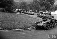 RENAULT R-35's, France 1938 #worldwar2 #tanks