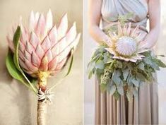 Utterly Stunning Protea Infused Wedding Flowers HOLY COW this is RAD! This is what I would have on if Becki was Close. Protea Wedding, Fall Wedding Bouquets, Bride Bouquets, Floral Bouquets, Wedding Flowers, Protea Bouquet, Protea Flower, Single Flower Bouquet, Paper Flowers