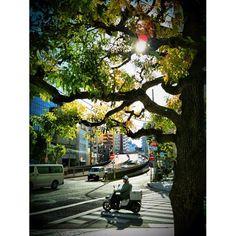 #instar #iphone3gs 도시에서 옛날 천사를 보다,, 최우수씨를 생각하다 도쿄 가나가와에서,, - 도시를 다시 보다 21 - @bluerain_- #webstagram