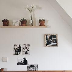 aesthetic plants | Tumblr