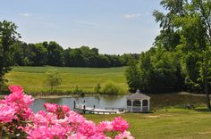 Fairview Farm in Central VA has a beautiful 115 acre estate and here is just one place photos can be taken for your event.