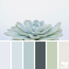 Design Seeds: Color Palettes Inspired by Nature Launched by Jessica Colaluca, Design Seeds is a color and inspiration site that celebrate colors found in nature and the aesthetic of purposeful living. Design Seeds has become her full-time job, a Design Seeds, Home Decor Colors, Colorful Decor, House Colors, Spa Colors, Spa Paint Colors, Neutral Colors, Vintage Paint Colors, Calming Colors