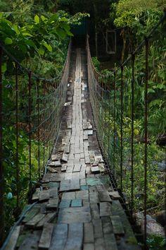 Hanging Bridge Near Arenal Volcano, Costa Rica.