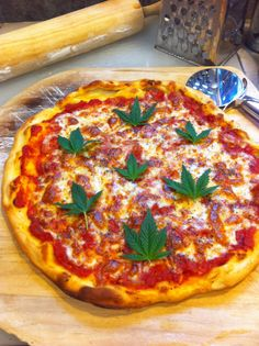 """""""Take and Baked"""" Pizza, Created by The Incredible, Medible Chef: Jurassic Blueberries  """"no need to light a match because it's made from scratch""""."""