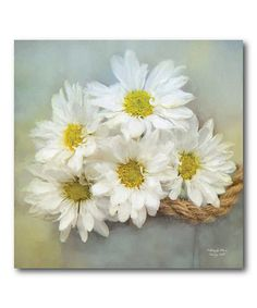 Another great find on #zulily! Daisies From the Field Wrapped Canvas #zulilyfinds