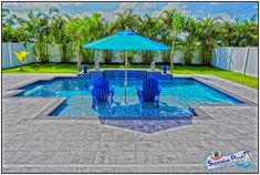 Superior Pools of Southwest Florida - Superior Pools A Custom Pool Builder Near You Your Pool Contractor. Pool Kings, Pool Contractors, Pool Remodel, Building A Pool, Custom Pools, Pool Builders, Diving, Relax, Florida