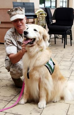 We love seeing this therapy dog at work - don't forget June 21 is National Take Your Dog to Work Day :)