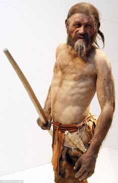 The model of Oetzi the iceman was sculpted by Dutch artists Adrie Kennis and Alfons Kennis.    Read more: www.dailymail.co....