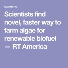 Scientists find novel, faster way to farm algae for renewable biofuel — RT America