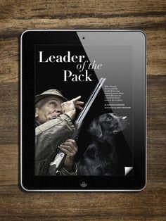 Hound & Hearth iPad Magazine App by Katherine Doherty, via Behance #magazine #digital