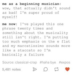 I'm a mix of the two even after so much time. Usually, it comes down to needing to settle with myself after my lips start bleeding after hours of practice 👍 Music Jokes, Music Humor, Funny Music, Band Problems, Flute Problems, Funny Band Memes, Marching Band Jokes, Band Nerd, Music Is Life