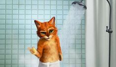 """For its movie Puss In Boots, Dreamworks Animation spoofed Old Spice ads. In """"The Cat Haz Swagger"""", Puss is featured in the shower with. Shrek, Cute Gif, Funny Cute, Crazy Cat Lady, Crazy Cats, Funny Cats Youtube, Parody Videos, Music Videos, Funny Commercials"""