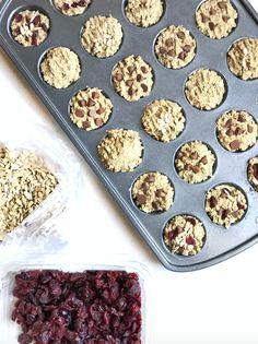 Mini Protein Sunflower Coconut Oat Muffins