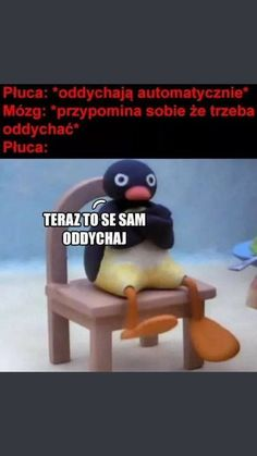 Very Funny Memes, Haha Funny, Funny Cute, Funny Lyrics, Polish Memes, Dark Sense Of Humor, Funny Mems, Quality Memes, Best Memes