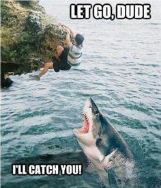 #LoL #extremeIdiots
