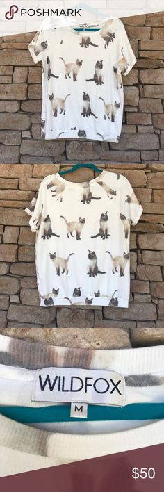 WILDFOX WE SIAMESE CAMDEN TOP WILDFOX WE SIAMESE Camden top (feels exactly like a bbj) in size medium. I purchased it in preloved condition (honestly looked brand new) and it's been sitting in my closet! Super soft and super cute! Sold out on the web!🐾POSH ONLY🐾 Wildfox Tops Tees - Short Sleeve