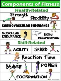 PE Poster Components of Fitness Health and by Capn Petes PE Teachers Pay Teachers Physical Education Activities, Elementary Physical Education, Elementary Pe, Health And Physical Education, Health Class, Kids Health, Educational Activities, Physical Fitness, Pe Activities