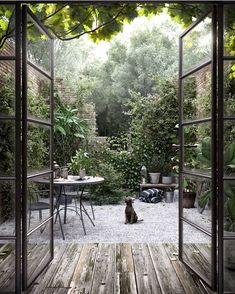 Small Courtyards, Small Courtyard Gardens, Back Gardens, Outdoor Gardens, Terrace Garden, Decoration Inspiration, Garden Inspiration, Outdoor Spaces, Outdoor Living