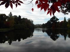 #SheffieldPark #Autumn#Acers