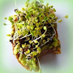 Miért jó csíráztatni? Avocado Toast, Breakfast, Food, Morning Coffee, Essen, Meals, Yemek, Eten
