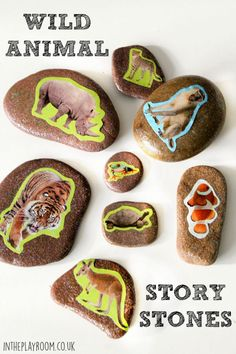 Wild Animal Story Stones - In The Playroom