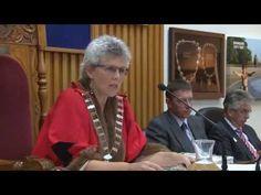 Part 2 of the WDC meeting about Hunderwasser Wairau Maori Art Centre