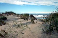 Beaches - Long Island