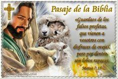 Vidas Santas: Santo Evangelio según san Mateo 7:15