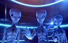 Dr. Steven Greer on Giant UFOs, Aliens and why they are here on Earth |UFO Sightings Hotspot