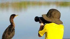 Carlos Perez Naval foi o vencedor do Young Wildlife Photographer of the Year 2014, prêmio do Museu de História Natural de Londres.