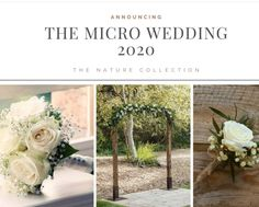 The Nature Collection. How incredible is this? The Micro Wedding (ceremony) packages will start at $300. We also offer the Copper  and White Collection. Need something different? Contact us Home Wedding, Wedding Events, Wedding Ceremony, Weddings, The Third Option, Nature Collection, Wedding Inspiration, Copper, Place Card Holders