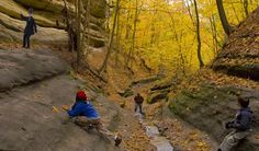 #MiniAbe recently visited @Starved Rock State Park in Utica, Illinois to see beautiful fall colors!