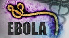 The Ebola virus is an hemorrhagic fever, which usually ends up with the death of the patient. This is not a new virus. It was seen in 1976 years in Africa for the first time. - See more at: http://naturalwayforhealth.com/ebola-hemorrhagic-fever-causes-diagnosis-and-treatment/#sthash.dZnNfMWu.dpuf