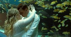 Wedding at Georgia Aquarium