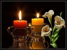 The perfect Lights Flowers Candles Animated GIF for your conversation. Discover and Share the best GIFs on Tenor. Romantic Images, Love Images, Candle Lanterns, Pillar Candles, Gifs, Miséricorde Divine, Meneses, 2 Advent, Good Night Gif