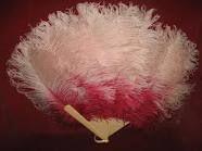 Pink Ostrich fan