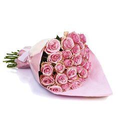 Bloom'd roses