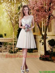 http://www.dressforquinces.com/2016-dama-dresses/perfect-a-line-champagne-dama-dresses-with-lace-for-2016-p-9922.html