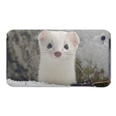 Ermine Wells hier res iPod Touch Cases