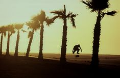 Andy Macdonald, Mission Beach, CA P: Grant Brittan Andy Macdonald, Fine Art Photography, Landscape Photography, Skate And Destroy, Mission Beach, California Love, What Is Like, Vacation Trips, San Diego