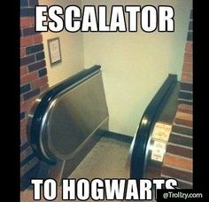 Escalators at Hogwarts memes can't stop laughing so true humor so funny Escalator FAIL Humour Harry Potter, Harry Potter Fandom, Harry Potter World, Meme Comics, Mischief Managed, Funny Relatable Memes, Funny Ads, Fun Funny, Super Funny