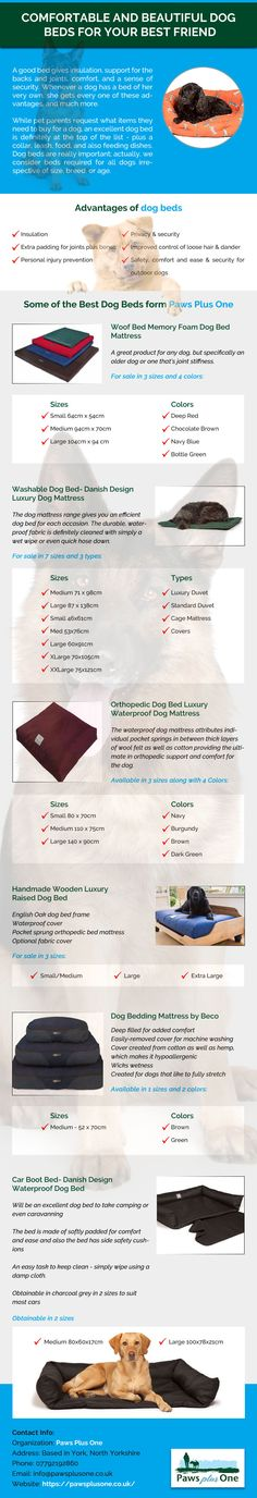 Paws Plus One creates the most beautiful luxury,Washable & Waterproof dog beds and gorgeously soft comfortable DOGS Beds for your furry best friend.Give your dog the gift of ultimate comfort dog bed. Your Best Friend, Best Friends, Fun Days Out, Dog Supplies, Beautiful Dogs, Your Dog, Dog Beds, Infographics, Countryside